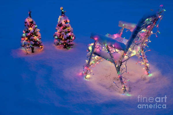 Photograph - Christmas Lights On Trees And Lawn Chair by Jim Corwin