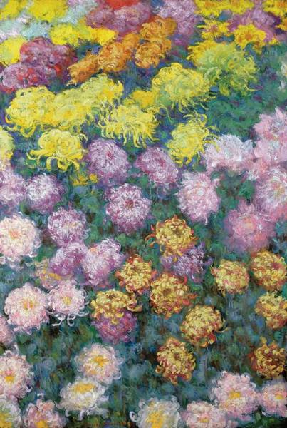 Plant Reproduction Painting - Chrysanthemums by Claude Monet