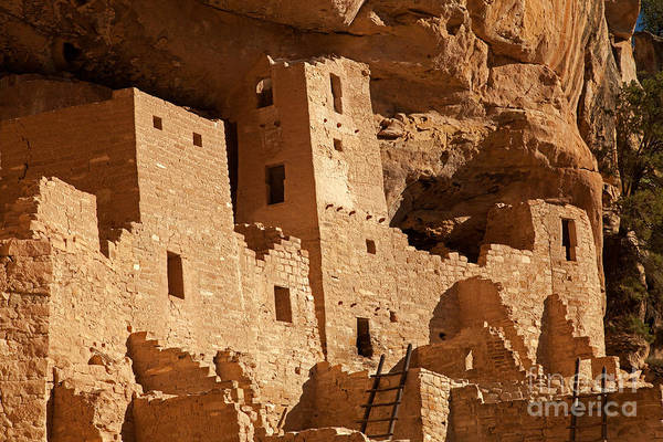 Photograph - Cliff Palace Mesa Verde National Park by Fred Stearns