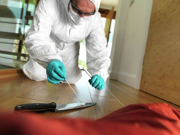Wall Art - Photograph - Collecting Forensic Evidence by Tek Image/science Photo Library