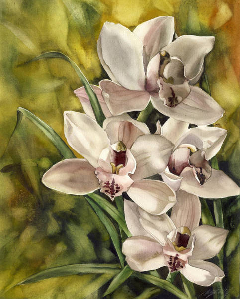 Painting - Cymbidium Orchid by Alfred Ng