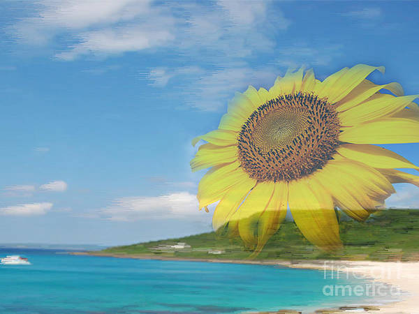 Sunflower Facing The Oceans  Art Print