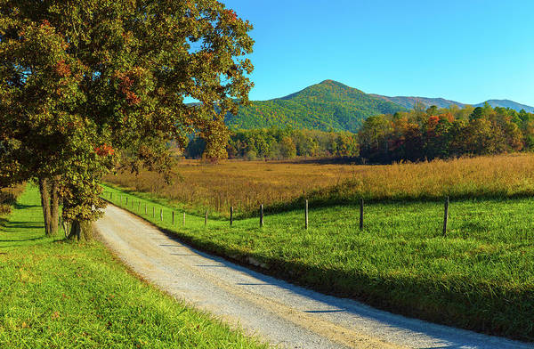 The Great Smoky Mountains Wall Art - Photograph - Dirt Road Passing Through A Field by Panoramic Images