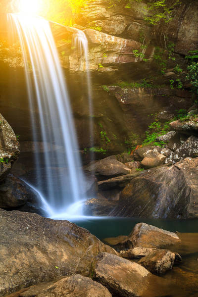 Eagle Ray Photograph - Eagle Falls by Alexey Stiop