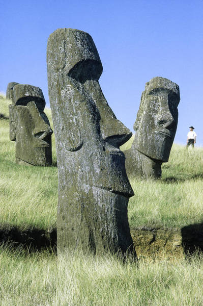 Wall Art - Photograph - Easter Island by George Holton
