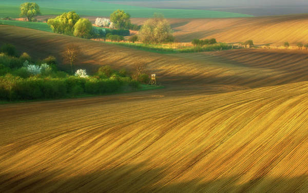 Grow Wall Art - Photograph - Fields... by Krzysztof Browko