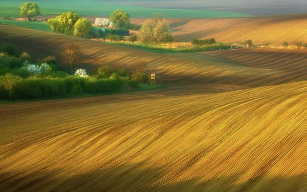 Grown Photograph - Fields... by Krzysztof Browko