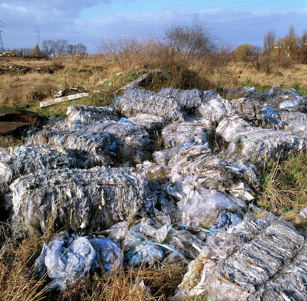 Manchester Photograph - Fly-tipping by Robert Brook/science Photo Library