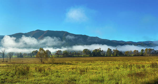Trees In Fog Photograph - Fog Over Mountain, Cades Cove, Great by Panoramic Images