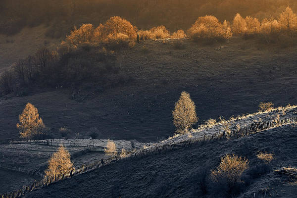 Romania Wall Art - Photograph - Fundatura Ponorului by Cristian Lee