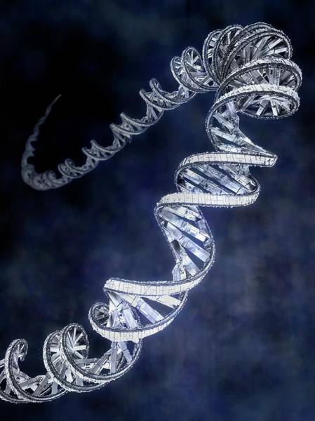 Wall Art - Photograph - Genetic Engineering by Gunilla Elam/science Photo Library