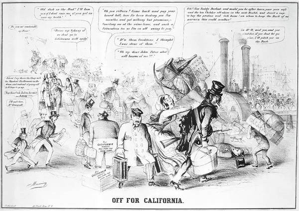 Political Cartoon Painting - Gold Rush Cartoon, 1849 by Granger