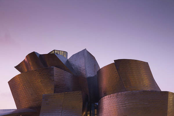 Bilbao Photograph - Guggenheim Museum Designed By Frank by Panoramic Images