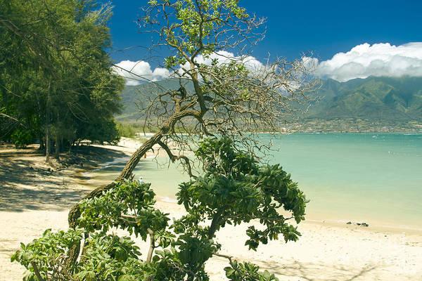 Photograph - Kanaha Beach Maui Hawaii  by Sharon Mau