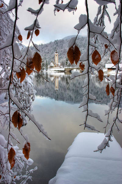 Wall Art - Photograph - Lake Bohinj In Winter by Ian Middleton