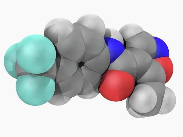 Wall Art - Photograph - Leflunomide Drug Molecule by Laguna Design/science Photo Library