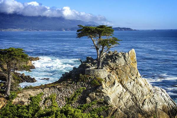 Monterey Bay Photograph - Lone Cypress by Leon Chang
