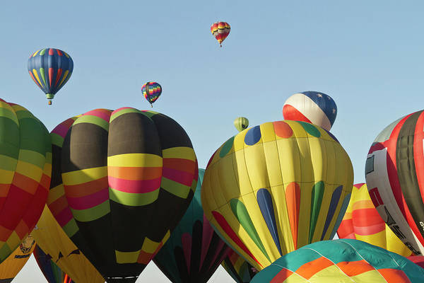 Fiesta Photograph - Mass Ascension At  The Albuquerque Hot by William Sutton