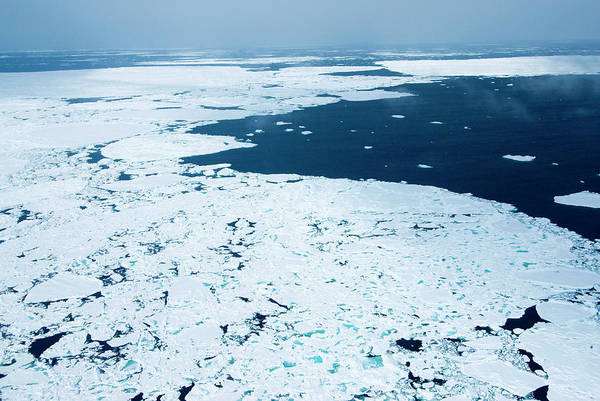 Wall Art - Photograph - Melting Arctic Sea Ice by Louise Murray/science Photo Library