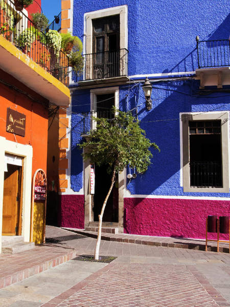 Backroad Wall Art - Photograph - Mexico, Guanajuato, Colorful Back Alley by Terry Eggers
