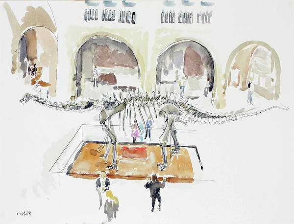 Wall Art - Photograph - Natural History Museum's Diplodocus by Natural History Museum, London/science Photo Library