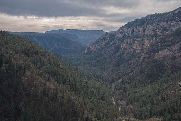 Photograph - Oak Creek Canyon Arizona by Steven Lapkin