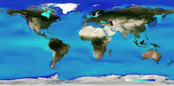 Alkaline Earth Photograph - Ocean Surface Ph by Noaa
