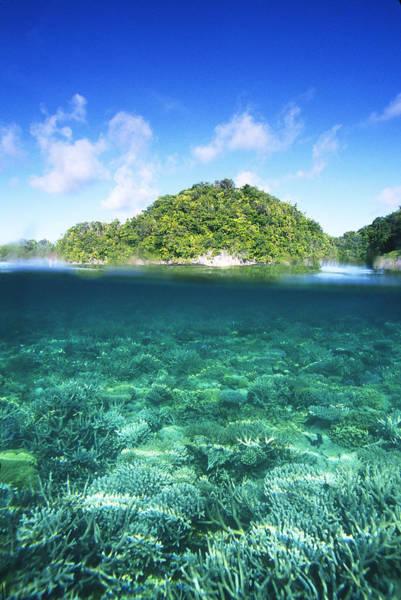 Wall Art - Photograph - Palau Lagoon by F. Stuart Westmorland