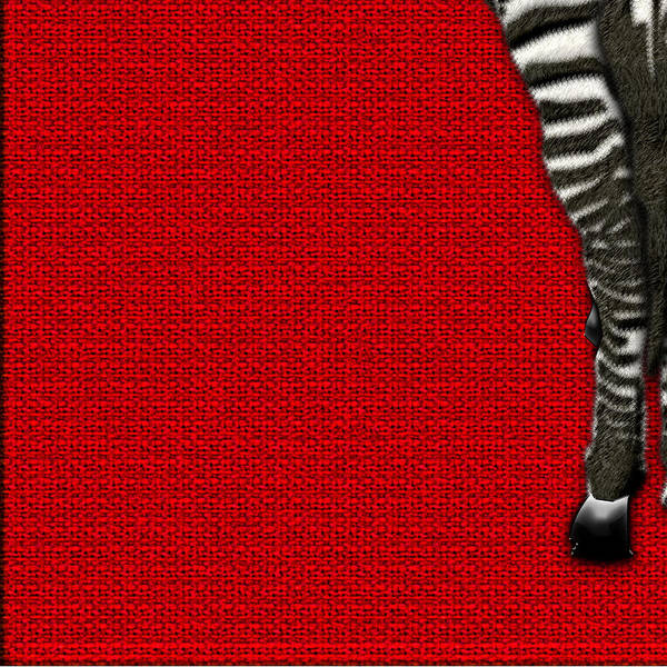 Digital Art - 4-piece Set Zebra Rear View On Red 3-of-4 by Serge Averbukh