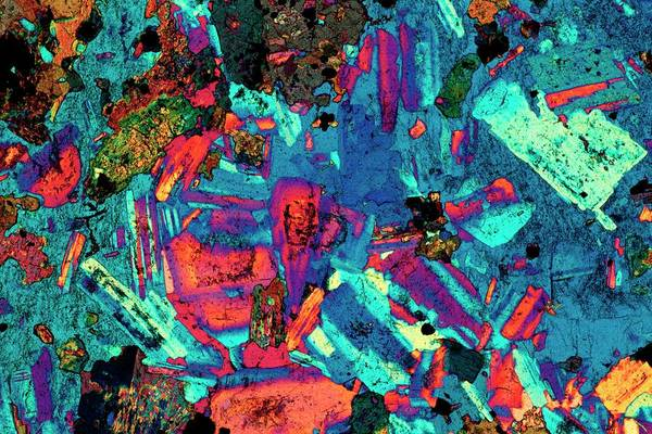 Wall Art - Photograph - Polarised Lm Of A Thin Section Of Diorite by Alfred Pasieka/science Photo Library
