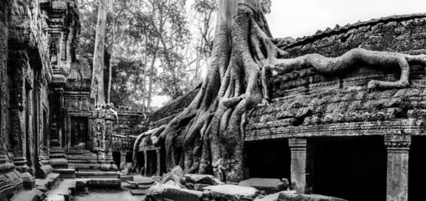 Reap Photograph - Ta Prohm Ruin by Julian Cook