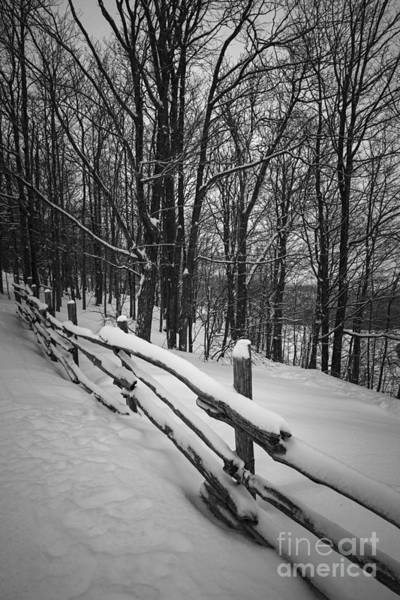 Wall Art - Photograph - Rural Winter Scene With Fence by Elena Elisseeva