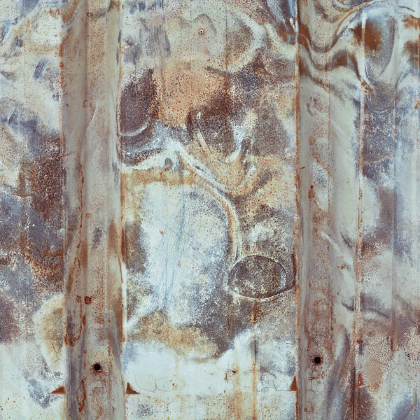 Brown Wall Art - Photograph - Rusty Metal by Tom Gowanlock