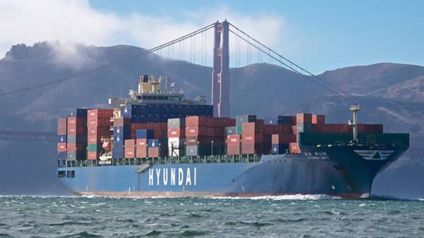 Photograph - San Francisco Bay by Steven Lapkin