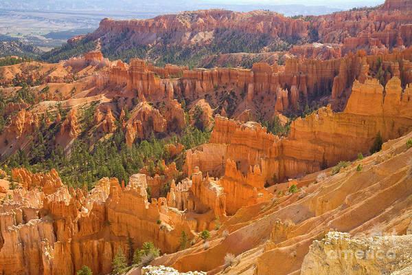 Photograph - Sandstone Hoodoos Bryce Canyon Natl Park by Yva Momatiuk John Eastcott