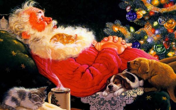 Photograph - Sleeping Santa Claus by Doc Braham