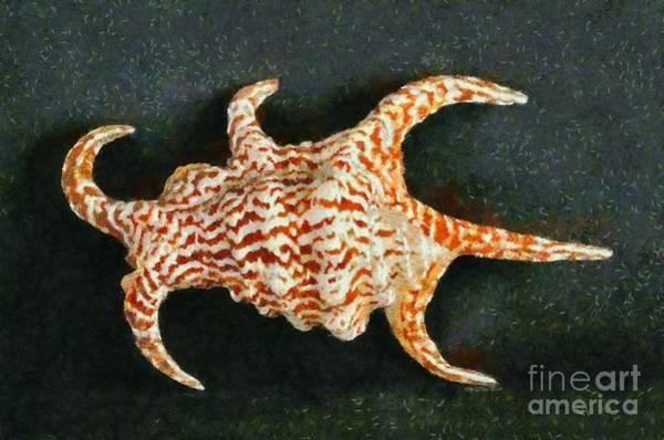 Husk Painting - Sea Shell by George Atsametakis
