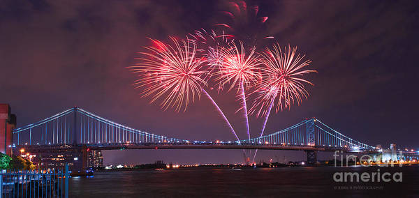 Photograph - 4 Th Of July Firework by Rima Biswas