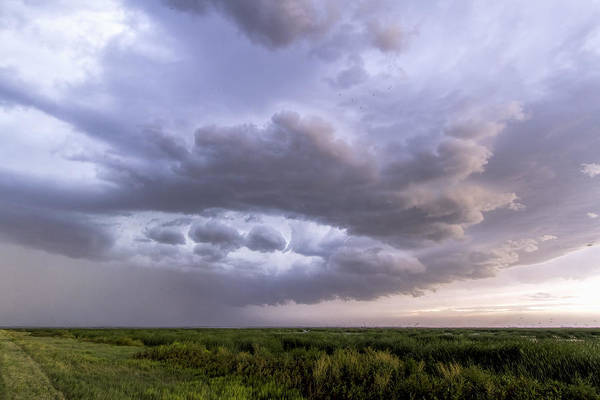 Photograph - Thunderstorm Over Cheyenne Bottoms by Rob Graham