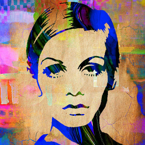 Wall Art - Mixed Media - Twiggy Collection by Marvin Blaine