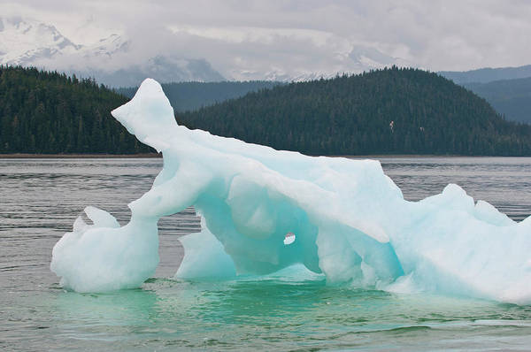 Ice Floe Photograph - Us, Ak, Inside Passage by Trish Drury