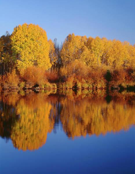 Deschutes River Photograph - Usa, Oregon, Deschutes National Forest by John Barger