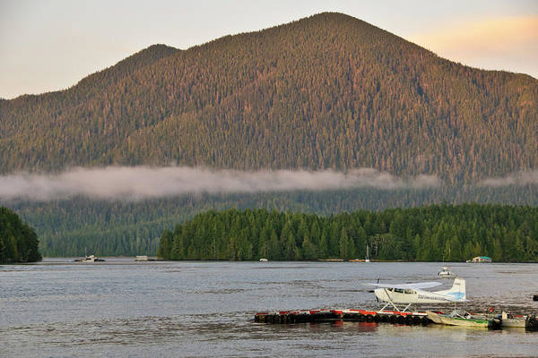 British Columbia Photograph - Vancouver Island, Tofino by Matt Freedman