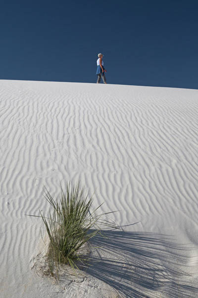 Chihuahuan Desert Photograph - White Sands National Monument by Jim West