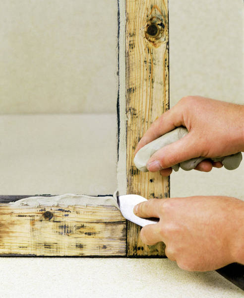 Trowel Photograph - Window Frame Restoration by Ton Kinsbergen/science Photo Library