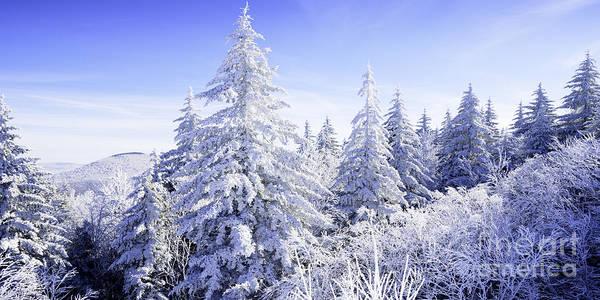 Winter Along The Highland Scenic Highway Art Print