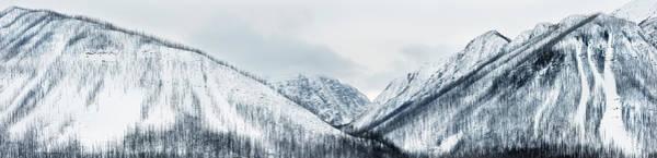 Wall Art - Photograph - Winter by Jeremy Walker