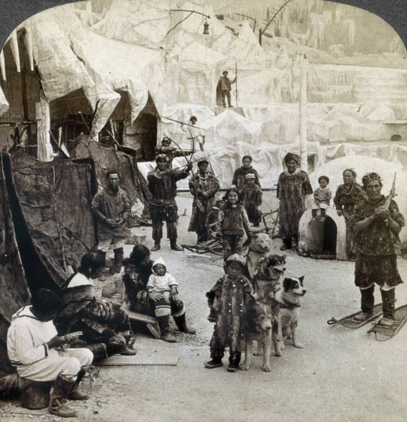 Photograph - World's Fair Eskimos by Granger
