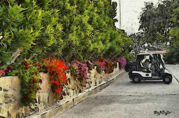 Photograph -  La Cumbre Golf Carts by Floyd Snyder