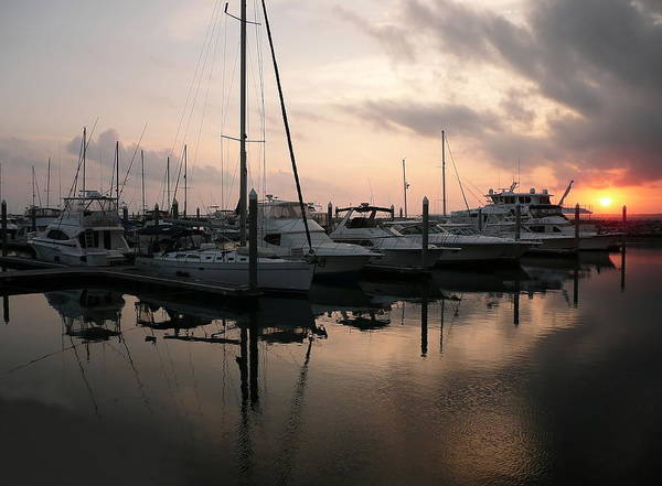 Photograph - Yachts At Sunset by Anthony Dezenzio